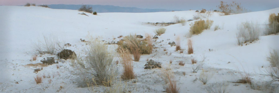 63 - White Sands Horizon