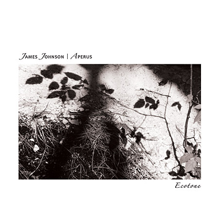 James Johnson | Aperus - Ecotone